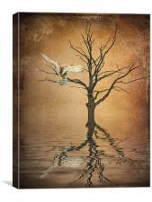 Golden Owl, Canvas Print