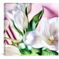 Fractalius Tulip 2, Canvas Print