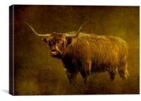 Highlander, Canvas Print