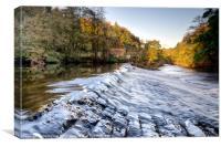 Nidd Gorge Autumn Weir, Canvas Print