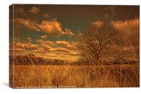 Watching from the tall grass, Canvas Print