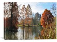 AUTUMN AT WISLEY, Canvas Print