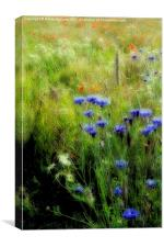 HEARTWOOD FOREST, Canvas Print