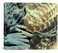 FEATHER PATTERN, Canvas Print