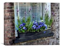 WINDOW BOX, Canvas Print