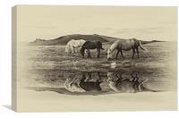 Reflection, Canvas Print