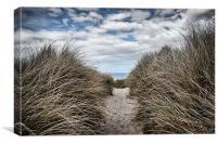 Sandy Pathway, Canvas Print