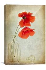 Two Poppies in a Glass Vase, Canvas Print