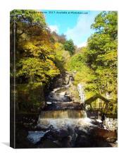 Bracklyne Falls Scotland, Canvas Print