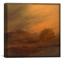 Beyond the Rowan Tree, Canvas Print