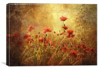 Golden Dawn, Canvas Print