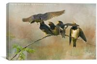 Sibling Rivalry, Canvas Print