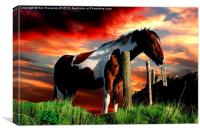 Equine Sunset, Canvas Print