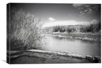 Rio Grande Hot Springs in black and white, Canvas Print