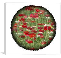 Beauty in the Round, Canvas Print
