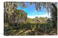 Old Rural Florida, Canvas Print