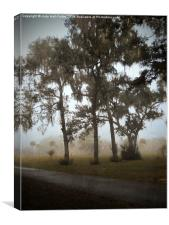 Foggy Morning, Canvas Print