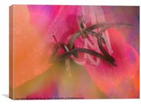 Colored by Nature, Canvas Print