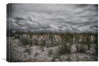 Dunes Day, Canvas Print
