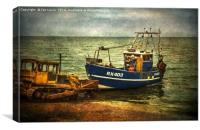 Launching from The Stade, Canvas Print