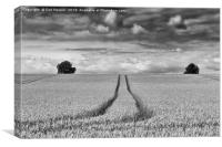Wheatfield, Canvas Print