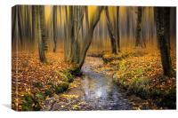 Autumn in Blean, Canvas Print