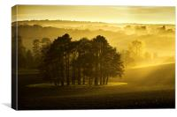 The Downs, Canvas Print