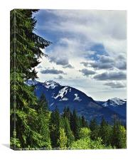 Canadian Rocky Mountain Woodlands, Canvas Print