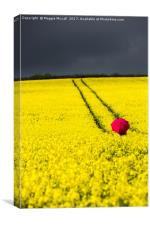 Red and Yellow and..., Canvas Print