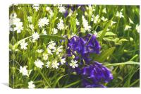 Artistic Greater Stitchwort and Bluebells, Canvas Print