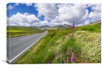 Road To Snowdon Mountain, Canvas Print