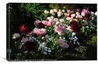 Spring Flowers, Canvas Print