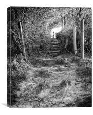 Steps, Canvas Print
