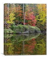 Pond Autumn Reflections, Canvas Print