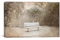 The Lonely Bench, Canvas Print