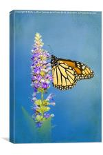 Flower Love, Canvas Print