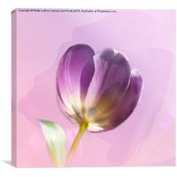 Blissfully Purple, Canvas Print