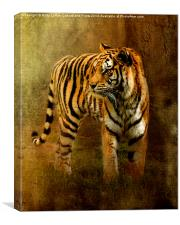 On The Hunt, Canvas Print
