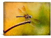 Waiting For My Date, Canvas Print