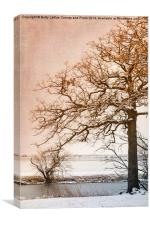 The Beauty of Winter, Canvas Print