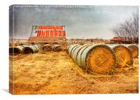 Slumbering in the Countryside, Canvas Print