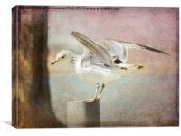 The Landing, Canvas Print