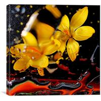 lively in yellow, Canvas Print