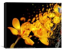 wet n wild flora , Canvas Print