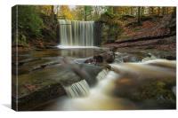 Autumn Falls , Canvas Print