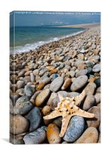 Chesil Beach, Dorset, Canvas Print