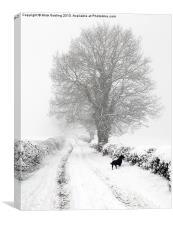 Winter Lane, Canvas Print