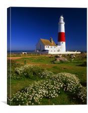 Portland Bill Lighthouse, Canvas Print