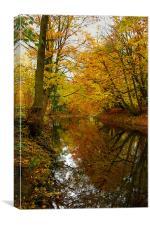 Autumn Colours,River Derwent,Matlock, Canvas Print