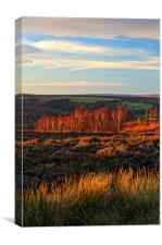 Golden Light over Froggatt Edge, Canvas Print